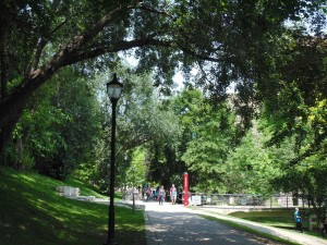 Nestled behind the ROM, Philosopher's Walk is lush and peaceful.